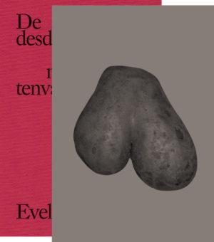 De desdichgeLelens lief nardNoo tenvan / Evelin Brosi